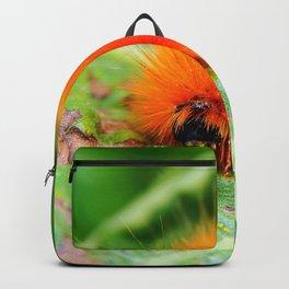 Hairy Caterpillar on Sunflower Leaf Backpack