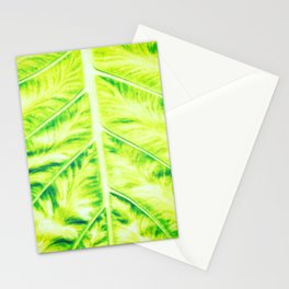 orderly Stationery Cards