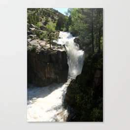 Awesome Shell Falls Canvas Print