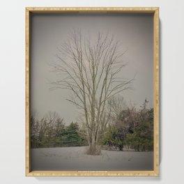 Oak Tree in Winter Serving Tray