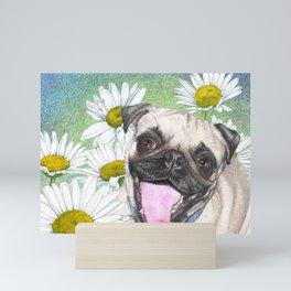 Daisy The Happy Pug Mini Art Print