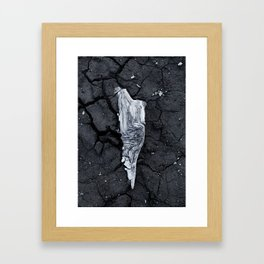 fossil Framed Art Print