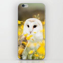 Australian Barn Owl (Tyto Alba) iPhone Skin