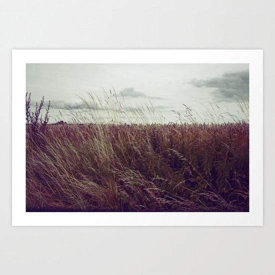 Autumn Field II Art Print