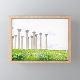 Capitol Columns Framed Mini Art Print