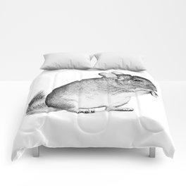 chinchilla Comforters