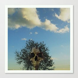 skull tree Canvas Print