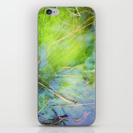 nugget gulch iPhone Skin