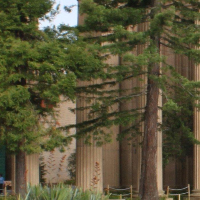 Exploratorium San Francisco Leggings