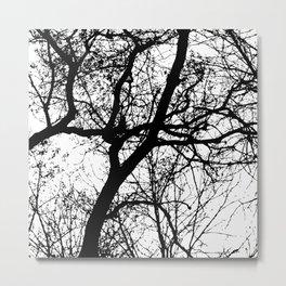 Branches 2 Metal Print