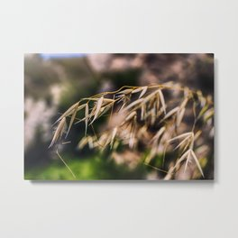 Everything Metal Print
