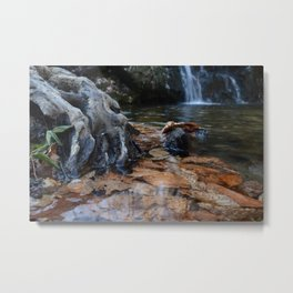 Leaves Underwater at Cascade Falls Metal Print