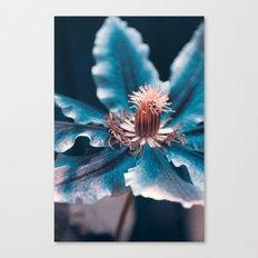 deep blue Canvas Print
