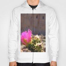 Cacti and Ruins 1 Hoody