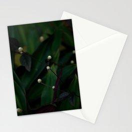 A DARK CALM Stationery Cards