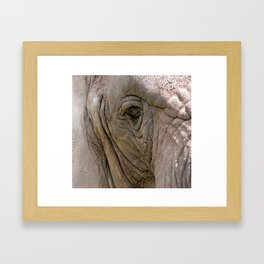 Kind Giant Framed Art Print