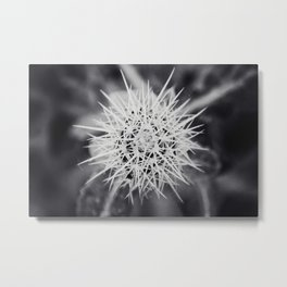 Night Fairy Metal Print