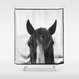 Equo 1 Shower Curtain