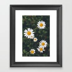 Daze-y Framed Art Print