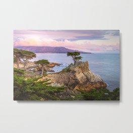 Lone Cypress Spring Sunset Metal Print