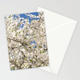 white flowers of Cerasus Stationery Cards