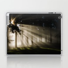 Boring Forest Laptop & iPad Skin