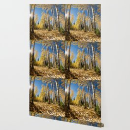 Crested Butte Colorado Fall Colors Panorama - 3 by OLena Art Wallpaper