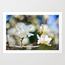 Twin Blooms Art Print