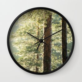 After rain Wall Clock