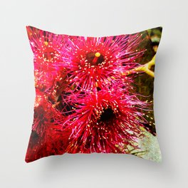 Tasmanian Yellow Gum Throw Pillow