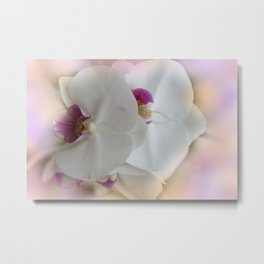 the beauty of a summerday -130- Metal Print
