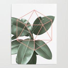 Geometric greenery Poster