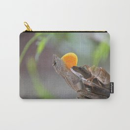 Cuban Anole with Cicada Carry-All Pouch