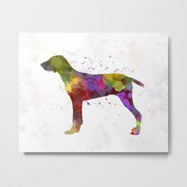 Wirehaired Slovakian Pointer in watercolor Metal Print
