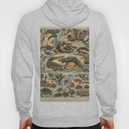 Adolphe Millot - Nouveau Larousse Illustré - Reptiles (1906) Hoody