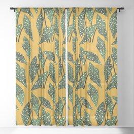 Begonia maculata pot watercolor Sheer Curtain