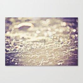 landing Canvas Print