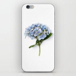 Blue hydrangea flowers iPhone Skin
