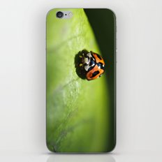 A ray of hope.  iPhone & iPod Skin
