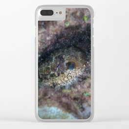 Octopus Hiding Clear iPhone Case