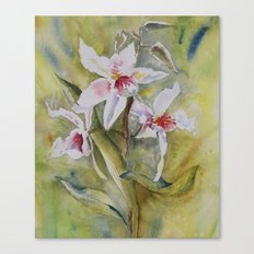 orchidée Canvas Print