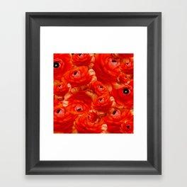 Rosenmotiv Framed Art Print