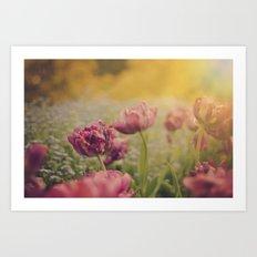 A Tulip Art Print