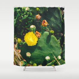 Gimme All Your Love Shower Curtain