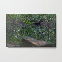 Calm Lake in the Woods Metal Print