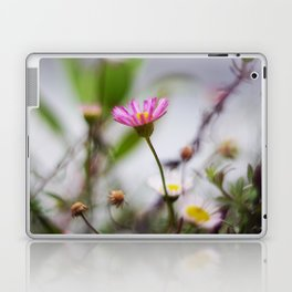 Sennen Cove Laptop & iPad Skin