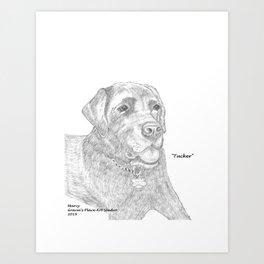 Portrait of Tucker Art Print