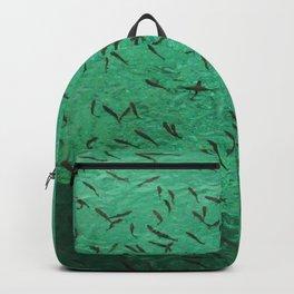 Shoal Backpack