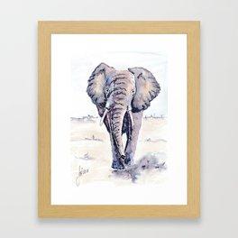 Elephant on a mission Framed Art Print