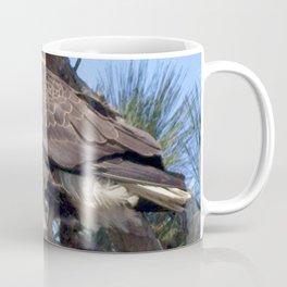 Watercolor Bird, Bald Eagle 02, Merchant's Millpond, North Carolina Coffee Mug